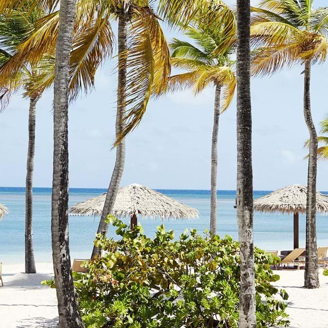 Beaches In Antigua Jumby Bay Island